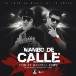 Cover: Endo Ft. Manny El Lider – Mambo De Calle