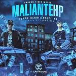 Benny Benni Ft Anuel AA – Maliante HP (Preview)