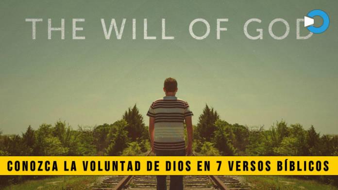 Conozca la Voluntad de Dios en 7 Versos Bíblicos