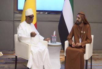 Coopération Mali-Émirats Arabes Unis : Les Émirats Arabes Unis intéressés par le transport aérien et l'Agriculture au Mali