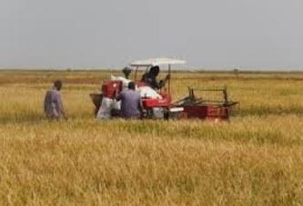Zone office du Niger : 70 motoculteurs remis aux exploitants