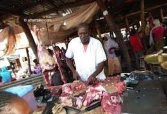Table ronde des bailleurs sur l'exportation de la viande du Mali : Les acteurs balisent le terrain