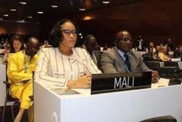 Mme N'Diaye Ramatoulaye Diallo à la session du comité du patrimoine mondial de l'UNESCO : Une invite à ne pas faire de l'amalgame par rapport à la crise au Centre
