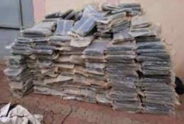 Douanes de Ségou : Une tonne de cannabis et de munitions saisis