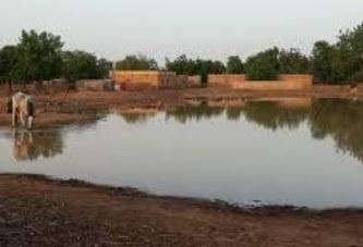 Plus de 1000 hectares incendiés à Farabougou : Une situation humiliante qui interpelle les militaires putschistes