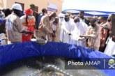 Fabrique d'Aliment Poisson Flottant : Une usine inaugurée à Sambalagnon
