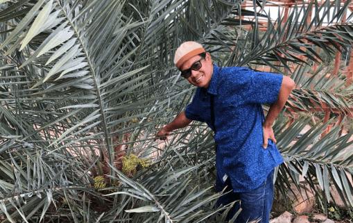 Sakkir Hanafi dan Kebun Kurma
