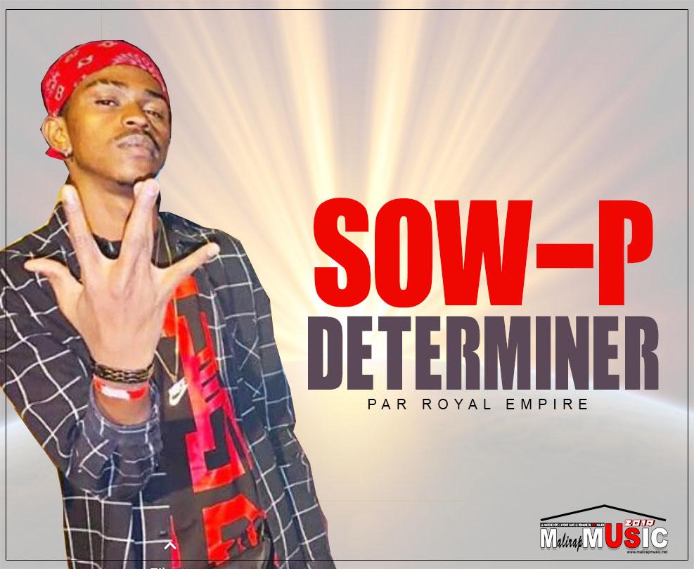 SOW P – DETERMINER (2019)