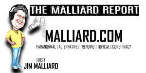 Cartoon of Malliard.com