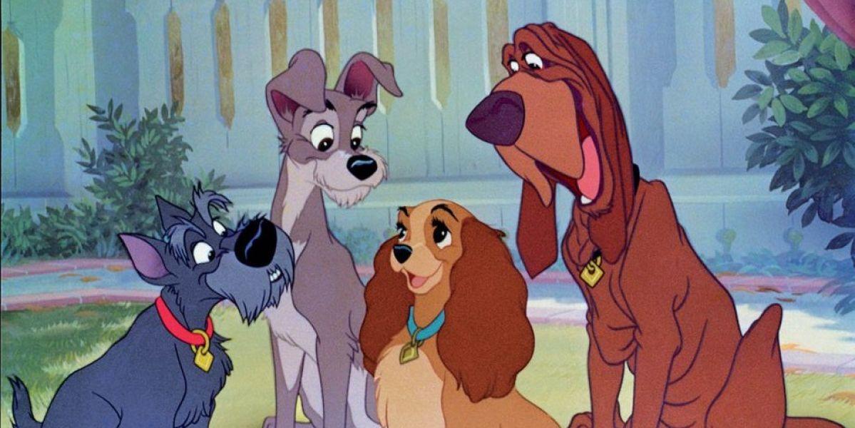 Disney El vagabundo