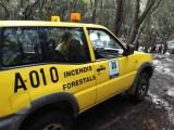 Waldbrand in Cala Estellencs unter Kontrolle