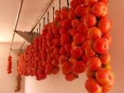 """Jetzt amtlich: Die """"Ramellet"""" Tomate ist ein traditionelles Lebensmittel"""