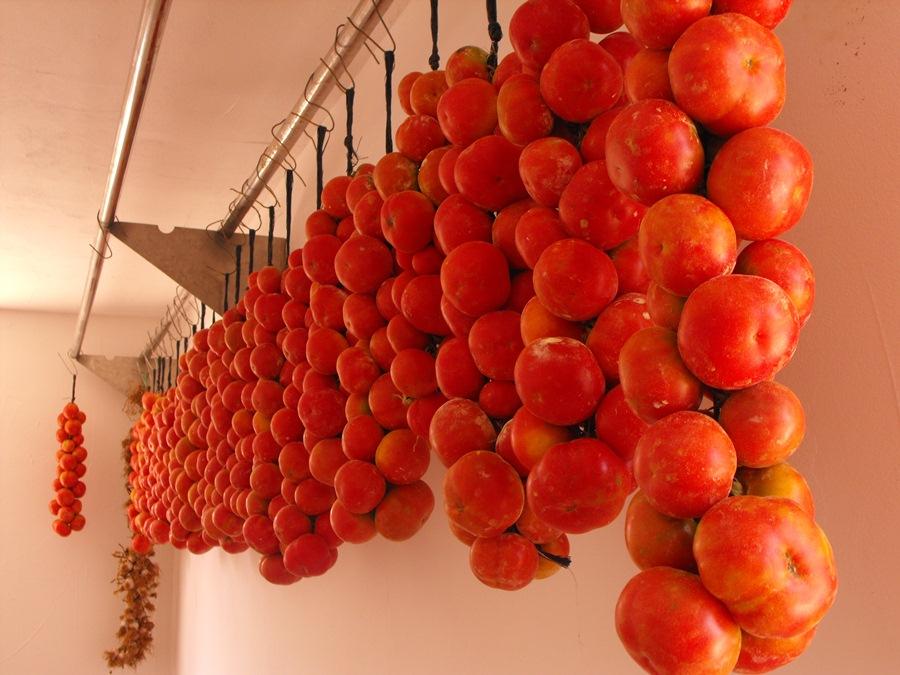 Ramallet Tomate