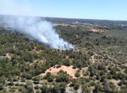 Waldbrand bei Son Veri sorgt für Verkehrsbehinderung