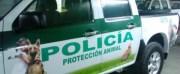 Tiere unter Polizeischutz