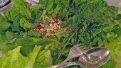 Thaisalat mit gehackter Hähnchenbrust