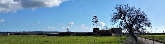 Die Mühlen von Campos