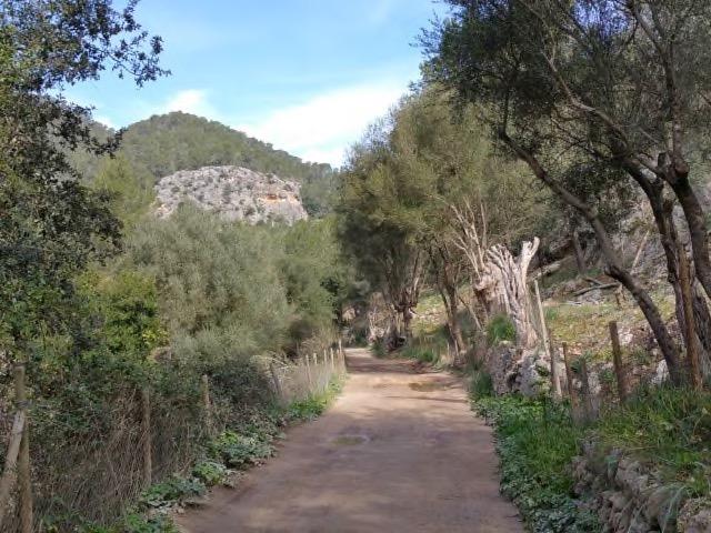 Der flache Weg durch´s Coanegra Tal