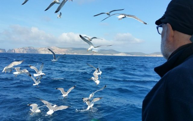 birdwatching Cabrera