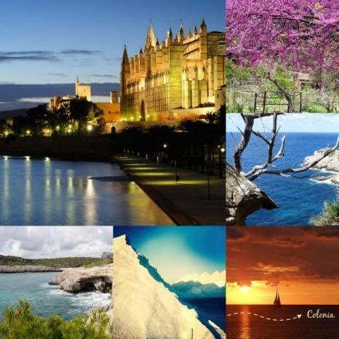 Mallorca Tipps von 6 Bloggern