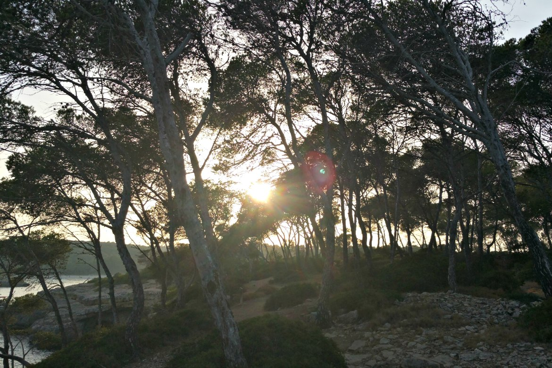 Sonnenuntergang Cala Mondrago - Mindful Mallorca Walk