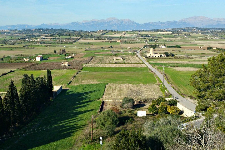 Ausblick von der Pfarrkirche in Santa Margalida Richtung Tramuntana