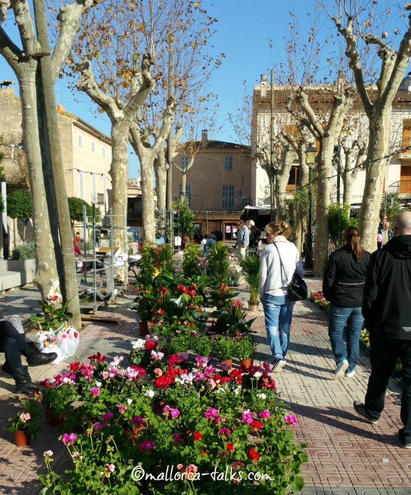 Dienstags ist Wochenmarkt in Santa Margalida