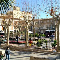 Markt in Santa Margalida - sehenswert!