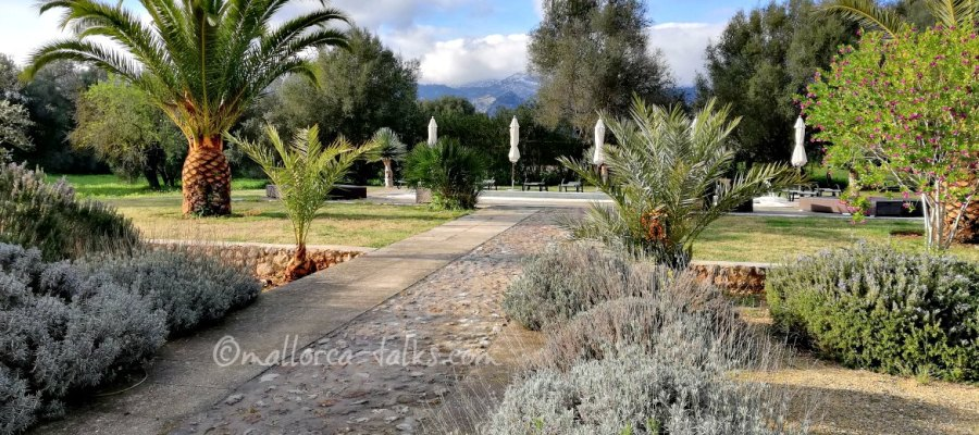 die neue Villa Vegana auf Mallorca in Selva