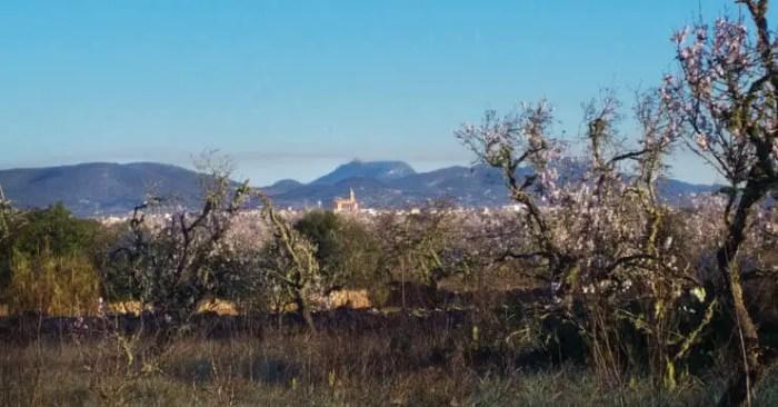 Santanyi - Mallorca für Kinder