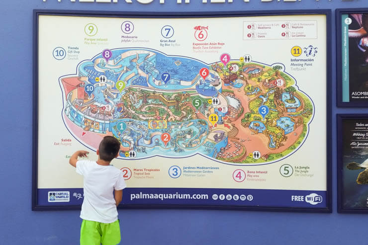 Palma Aquarium - Mallorca für Kinder