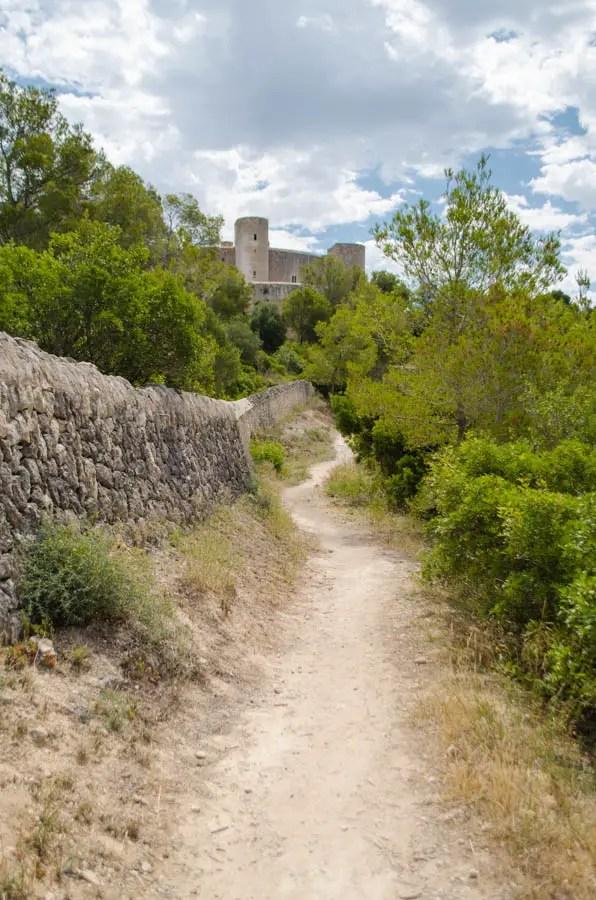 Der Wald der Burg Bellver