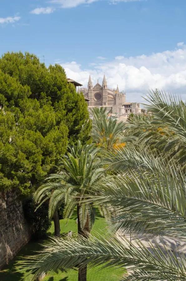 Blick auf Kathedrale von Palma