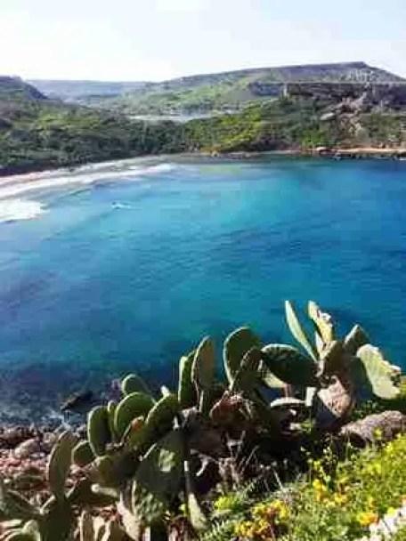 maltaway_surf_maui_mediterraneo