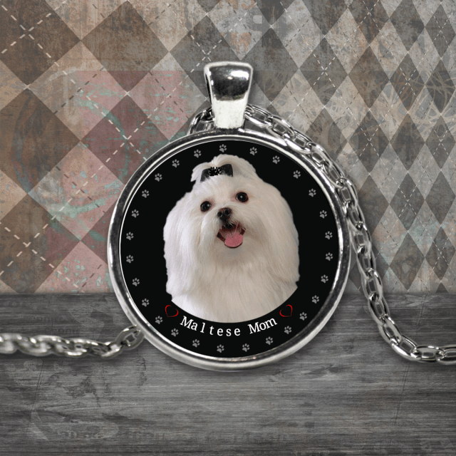 maltese dogs necklace