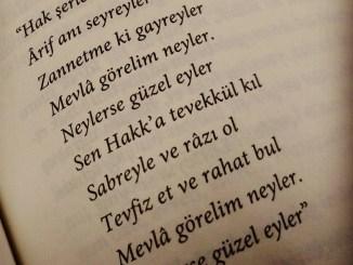 """""""Mevlâ Görelim Neyler, Neylerse Güzel Eyler"""" Sözü"""