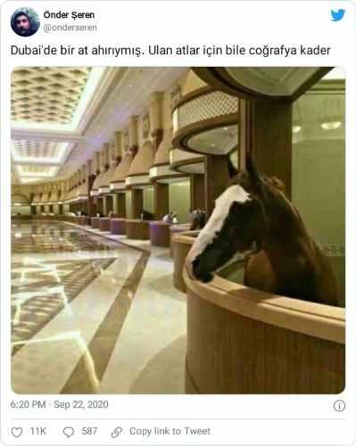 dubai at ahırı