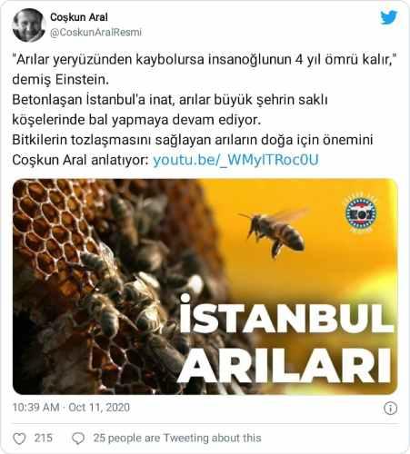 Arılar yeryüzünden kaybolursa insanoğlunun 4 yıl ömrü kalır