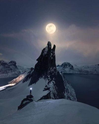 kurt dağı