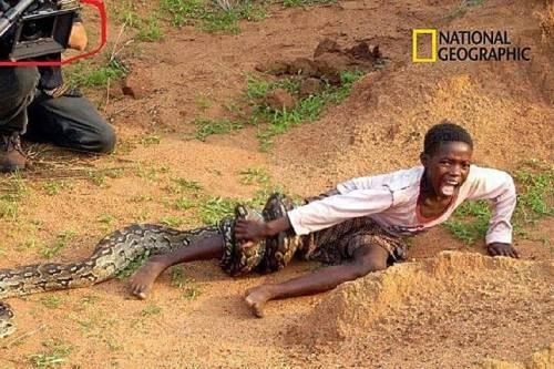 yılanın ısırdığı çocuk