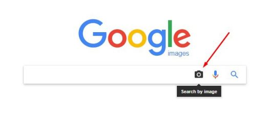 Search on Google Image 1