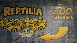 Reptilia Zoo