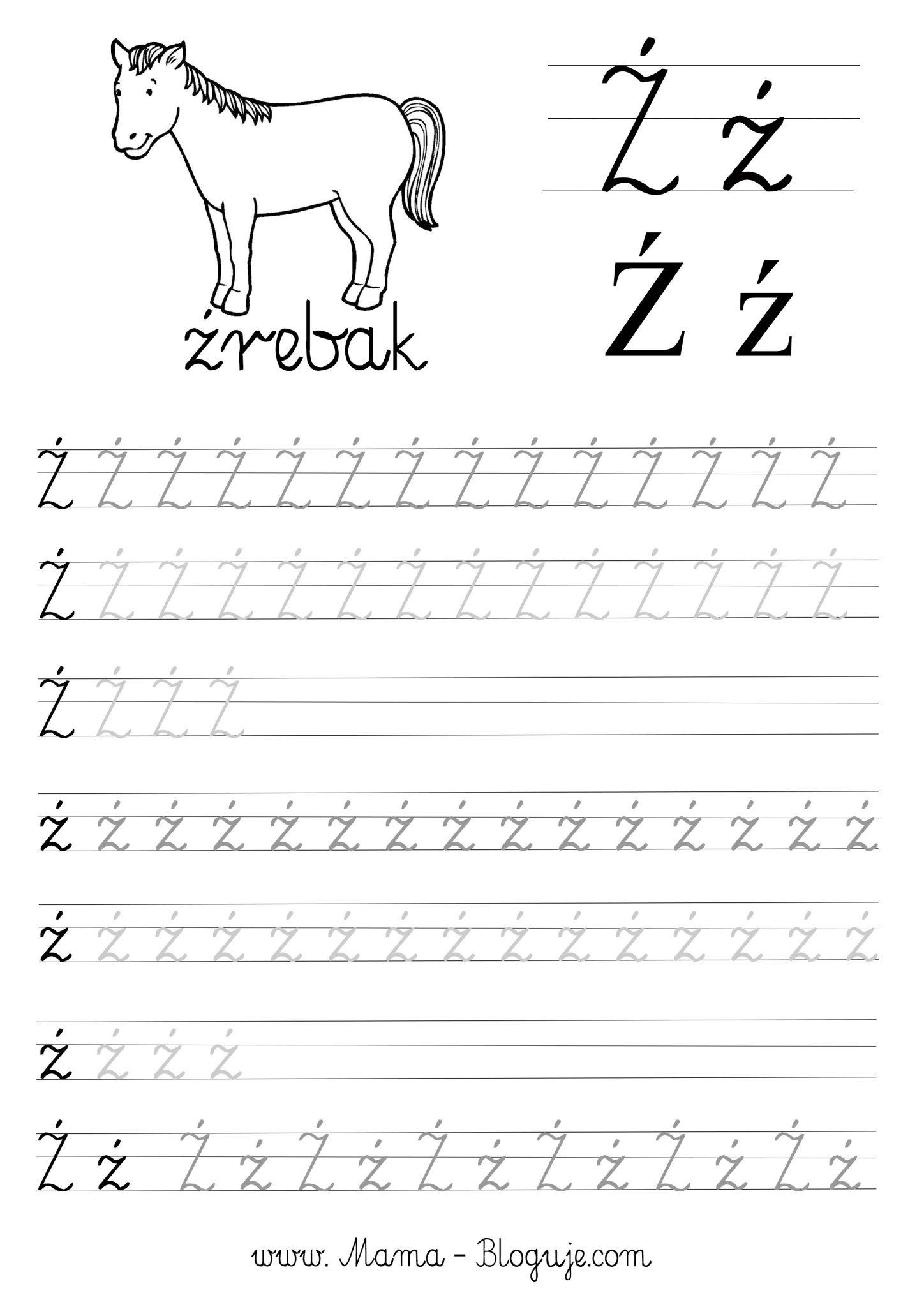 Literka zzz nauka pisania - SZABLONY DO NAUKI PISANIA - 🇵🇱 POLSKIE LITERKI - CZ.3 - DO POBRANIA