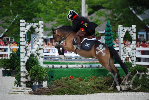devon horse show 2011 d