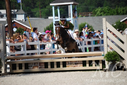 devon horse show 2011 e