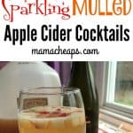 Sparkling Mulled Apple Cider Cocktail Recipe