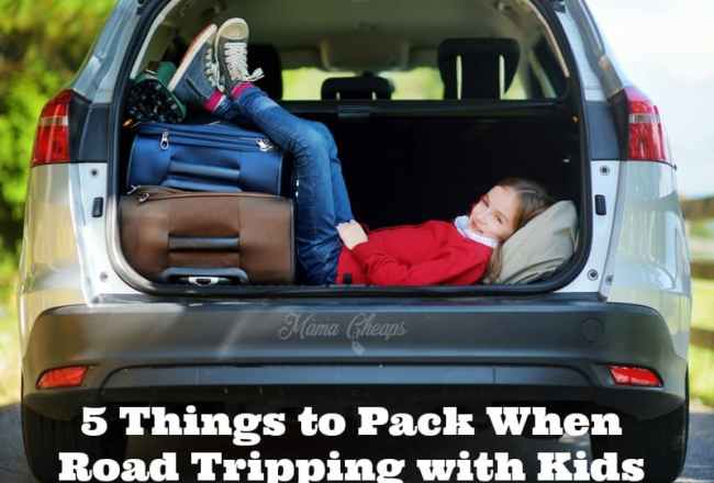 5 Things to Pack When Road Tripping with Kids
