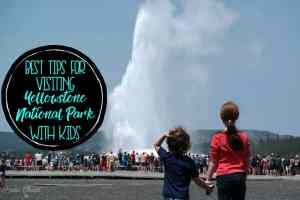 Best Tips for Visiting Yellowstone National Park with Kids