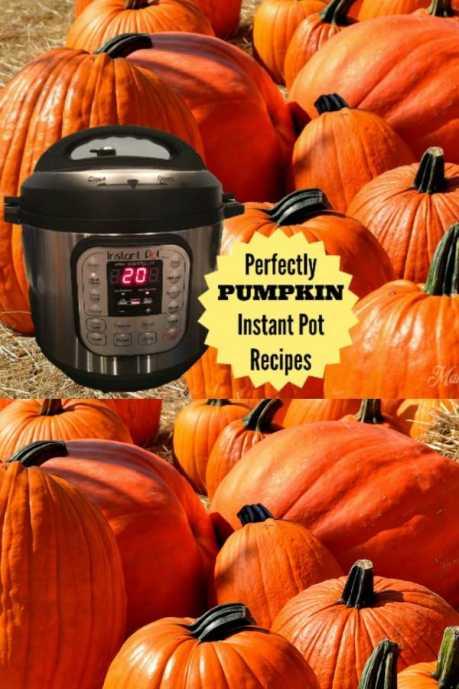 pumpkin pressure cooker recipes