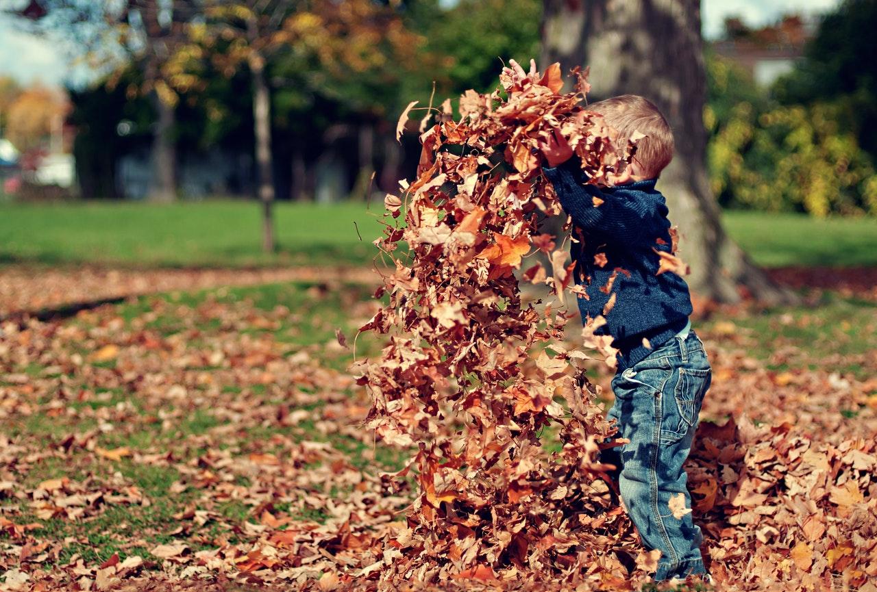 Crises De Sinusite Crônica - Menino Brincando Com Folhas De Outono